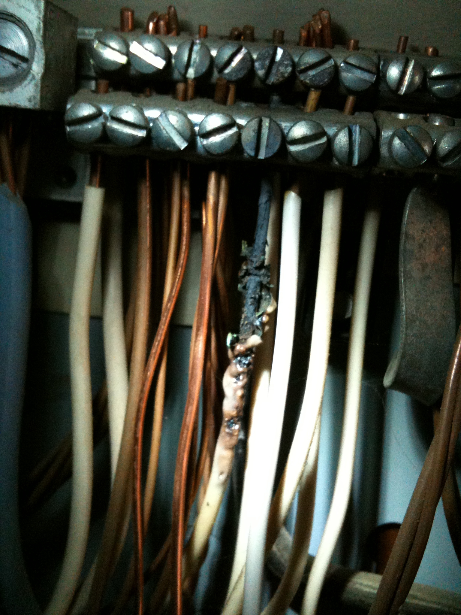 Neutral wires in the electrical panel, Vancouver Washington ...